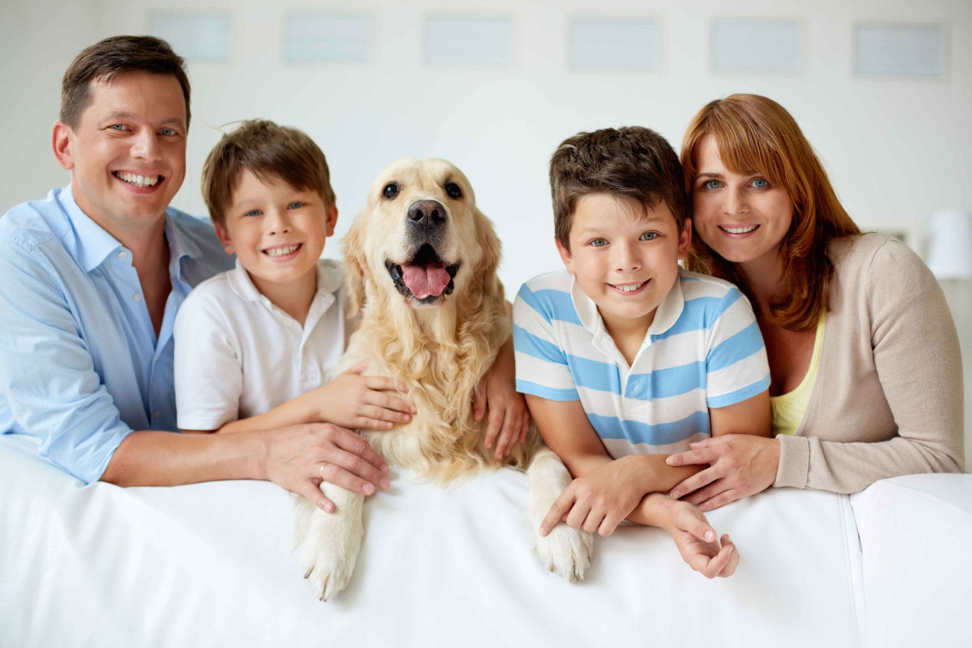 Dog Safety Tip: Top Dogs For Kids
